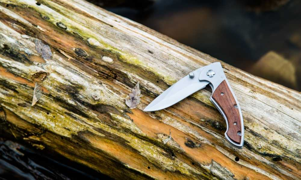 Best Folding Hunting Knife of 2018 Complete Reviews With Comparison