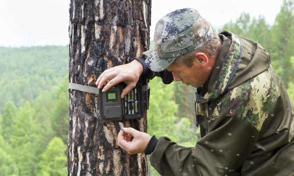 Best Trail Camera Under 100 of 2018 – Complete Reviews With Comparison