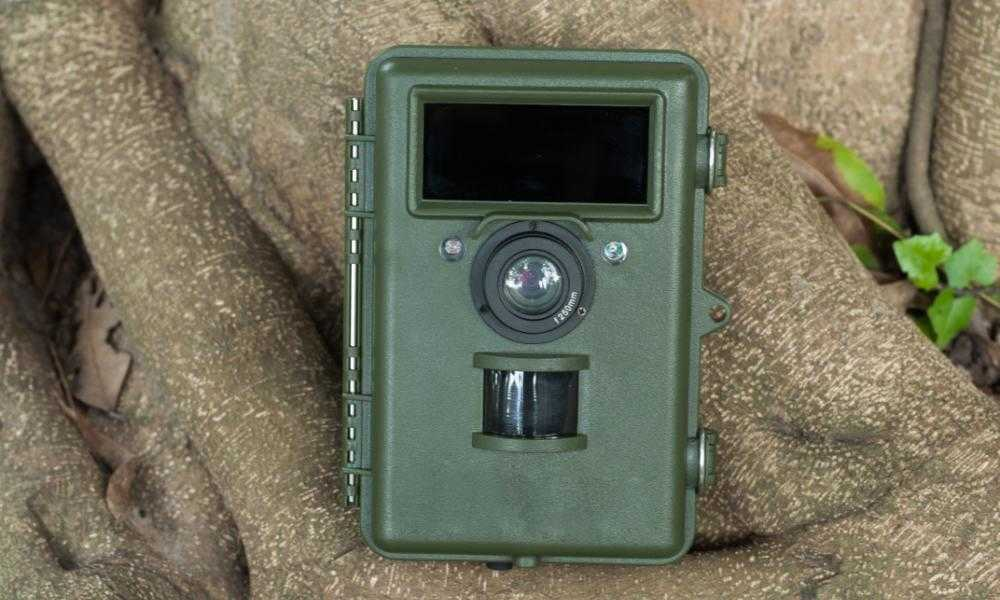 Best Trail Camera of 2018 – Complete Reviews with Comparison