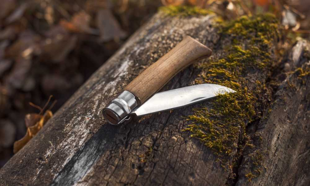 Buck Knives 110 Famous Folding Hunter Knife Review