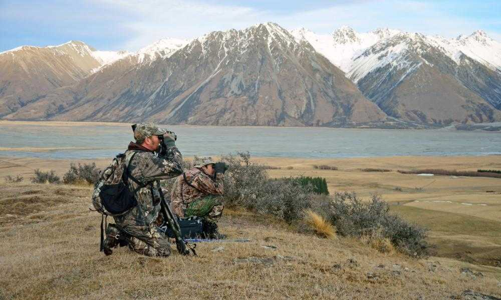 Bushnell PowerView HighPowered Binoculars Review