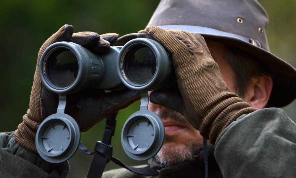 Good Hunting Binoculars on a Budget How to Find Great and Cheap Hunting Binoculars