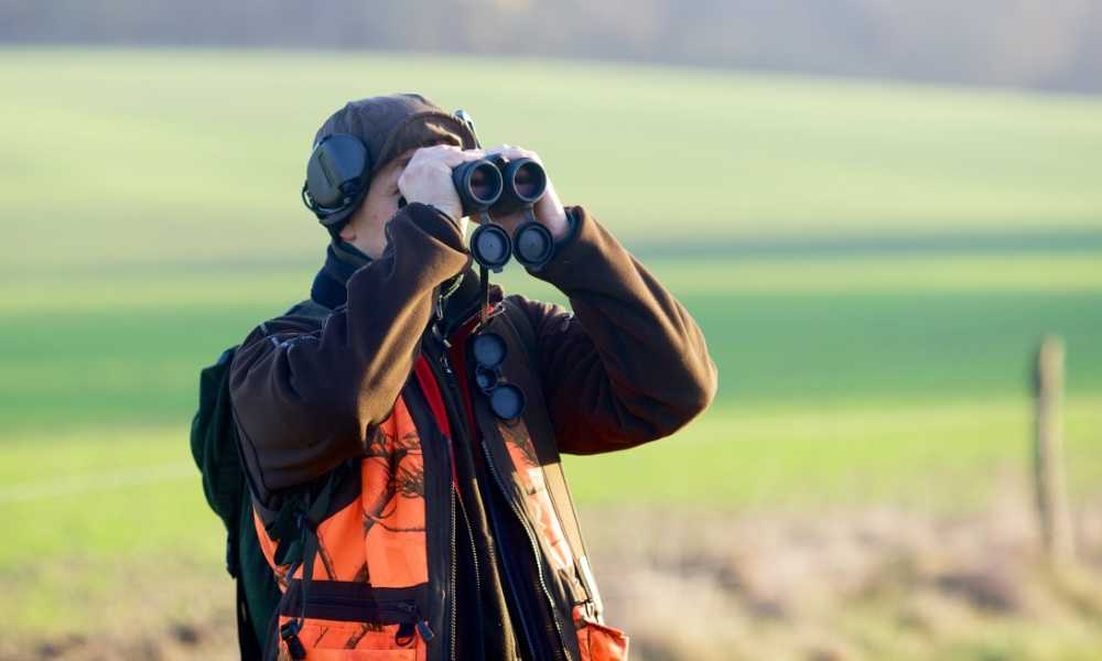 Good Hunting Binoculars on a Budget