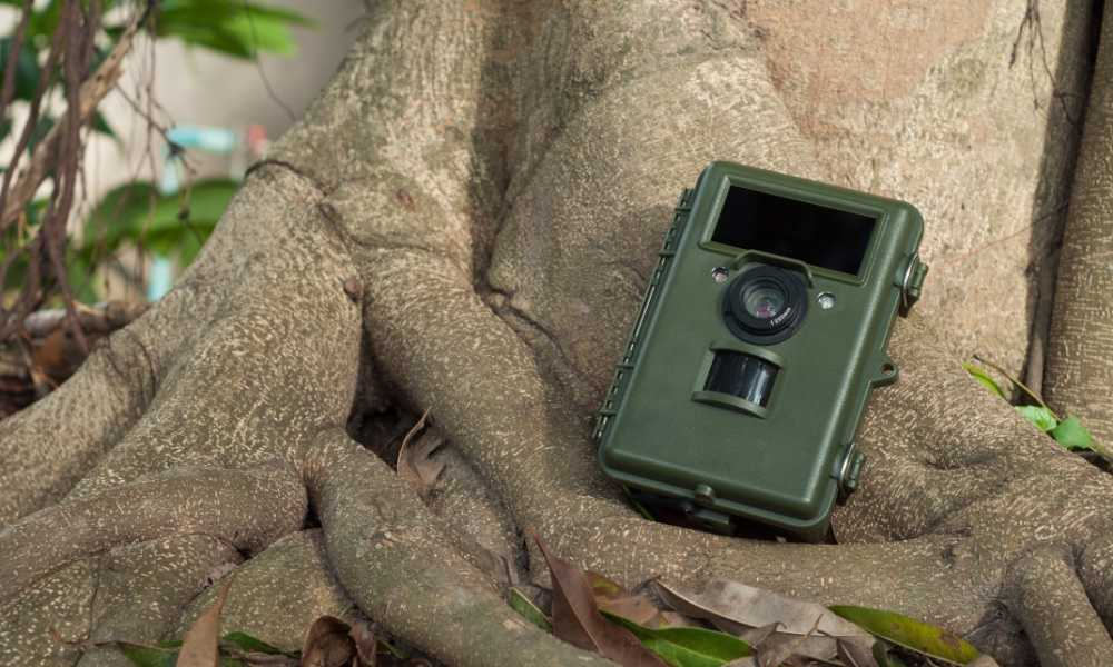 Gosira 1080P Trail Game Camera Review