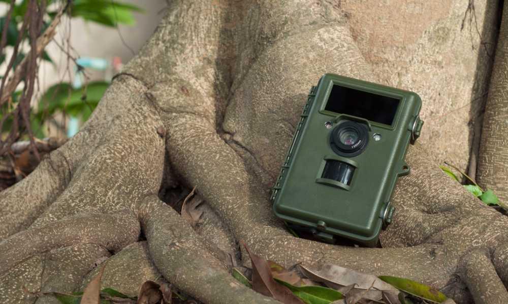 Gosira 1080P Trail Game Camera Review