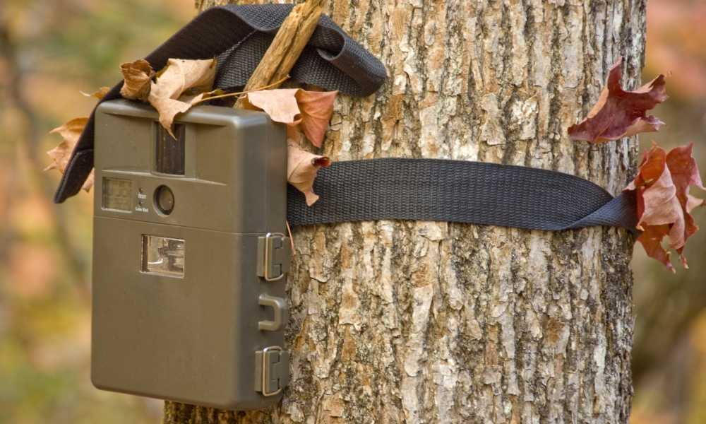 Moultrie MCG-13201 A30 Game Camera Review