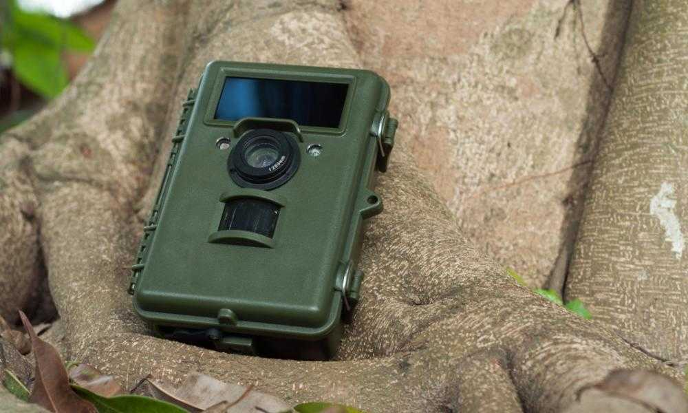 TEC.BEAN Trail Camera Review