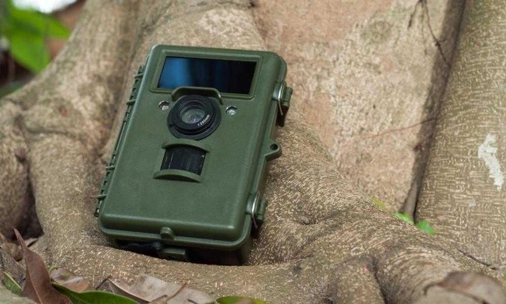 TEC.BEAN Trail Camera Review