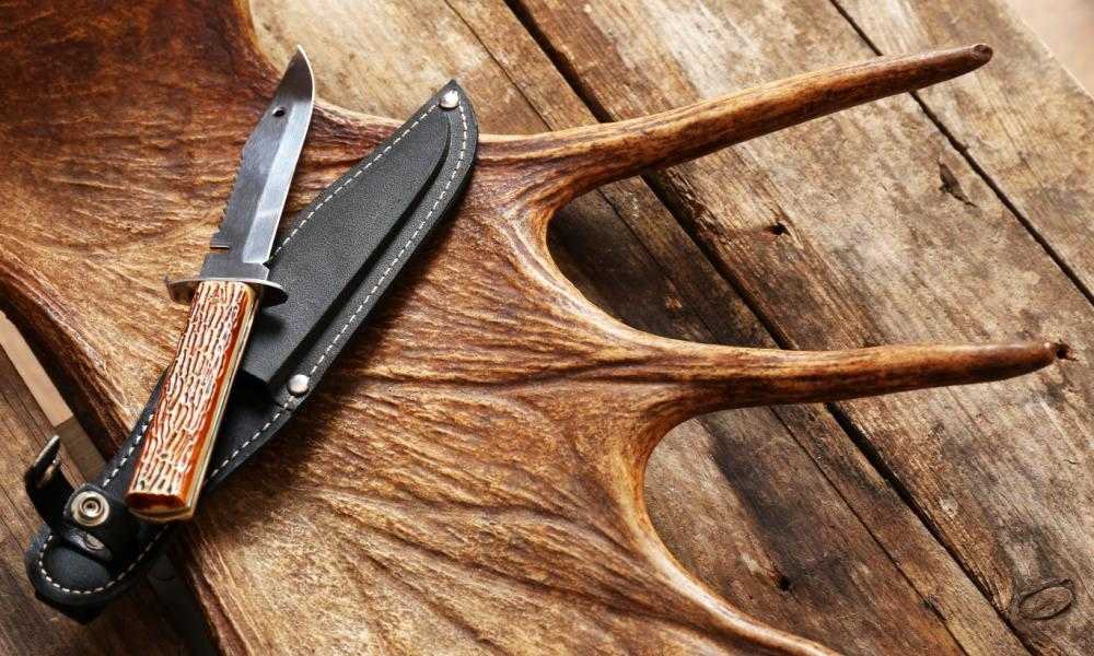 The Cutting Edge - Best Way to Sharpen a Hunting Knife