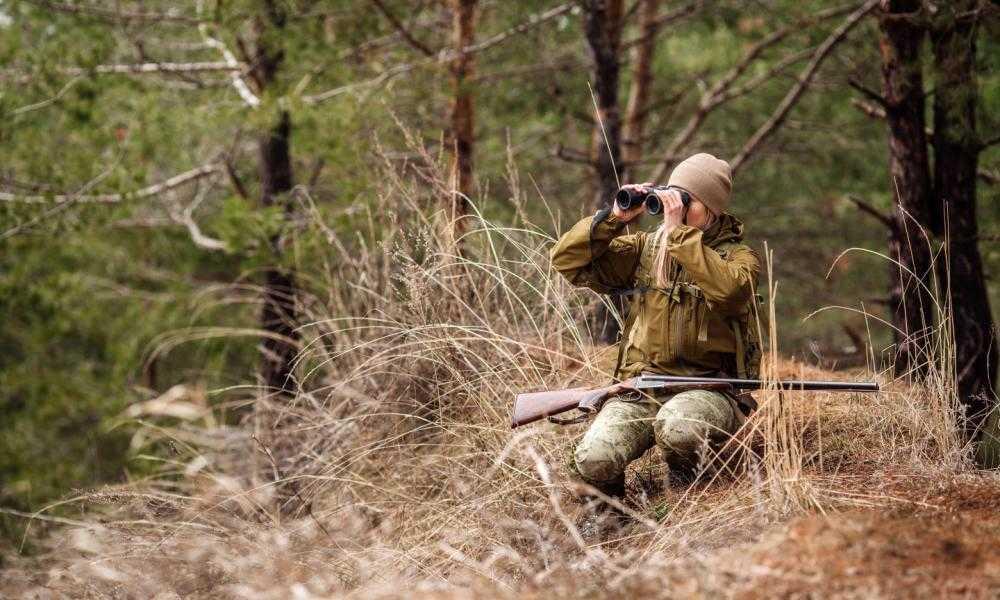 Vortex Optics Diamondback Binoculars Review