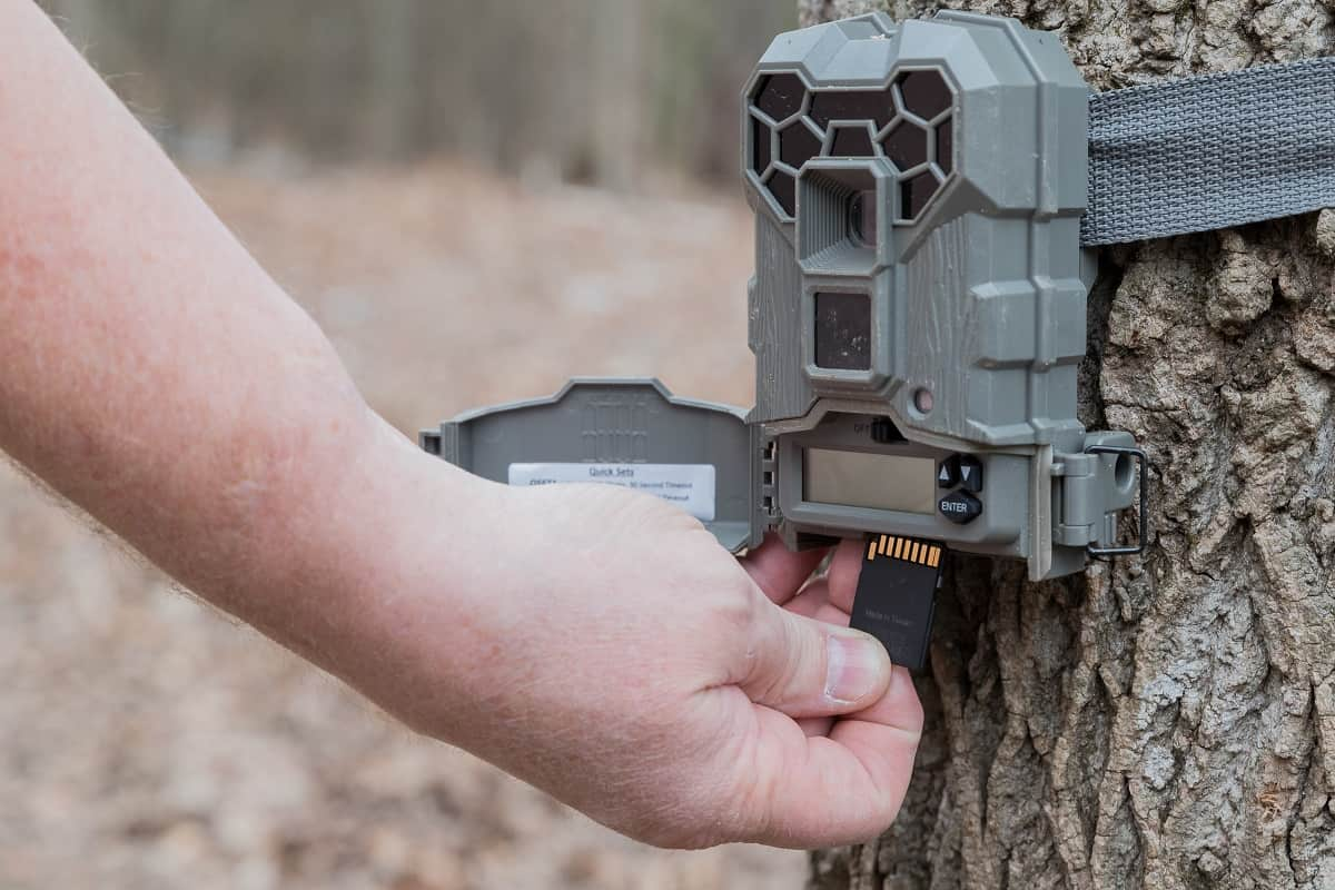 Best Browning Trail Camera - wildlifechase.com
