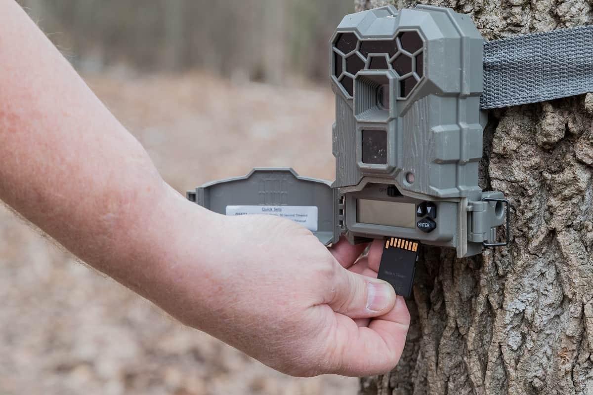 Best Browning Trail Camera - wildlifechase.com